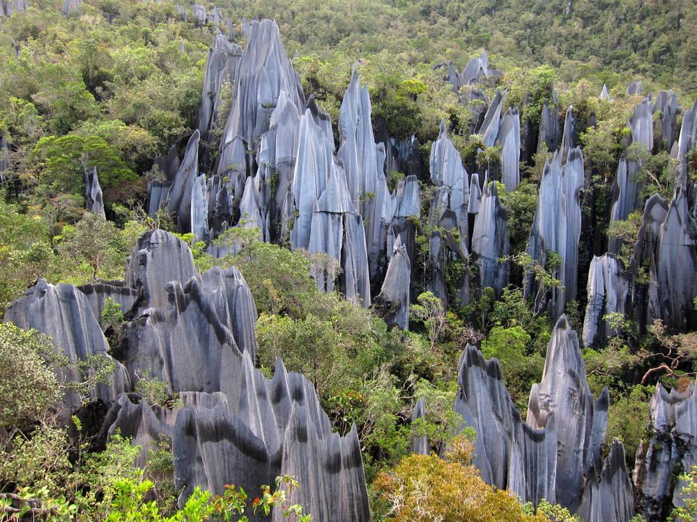 gunung Mulu Pinnacles borneo malaysia