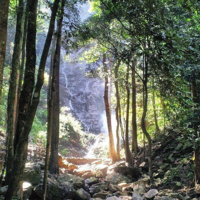 naturally langkawi waterfall and jungle